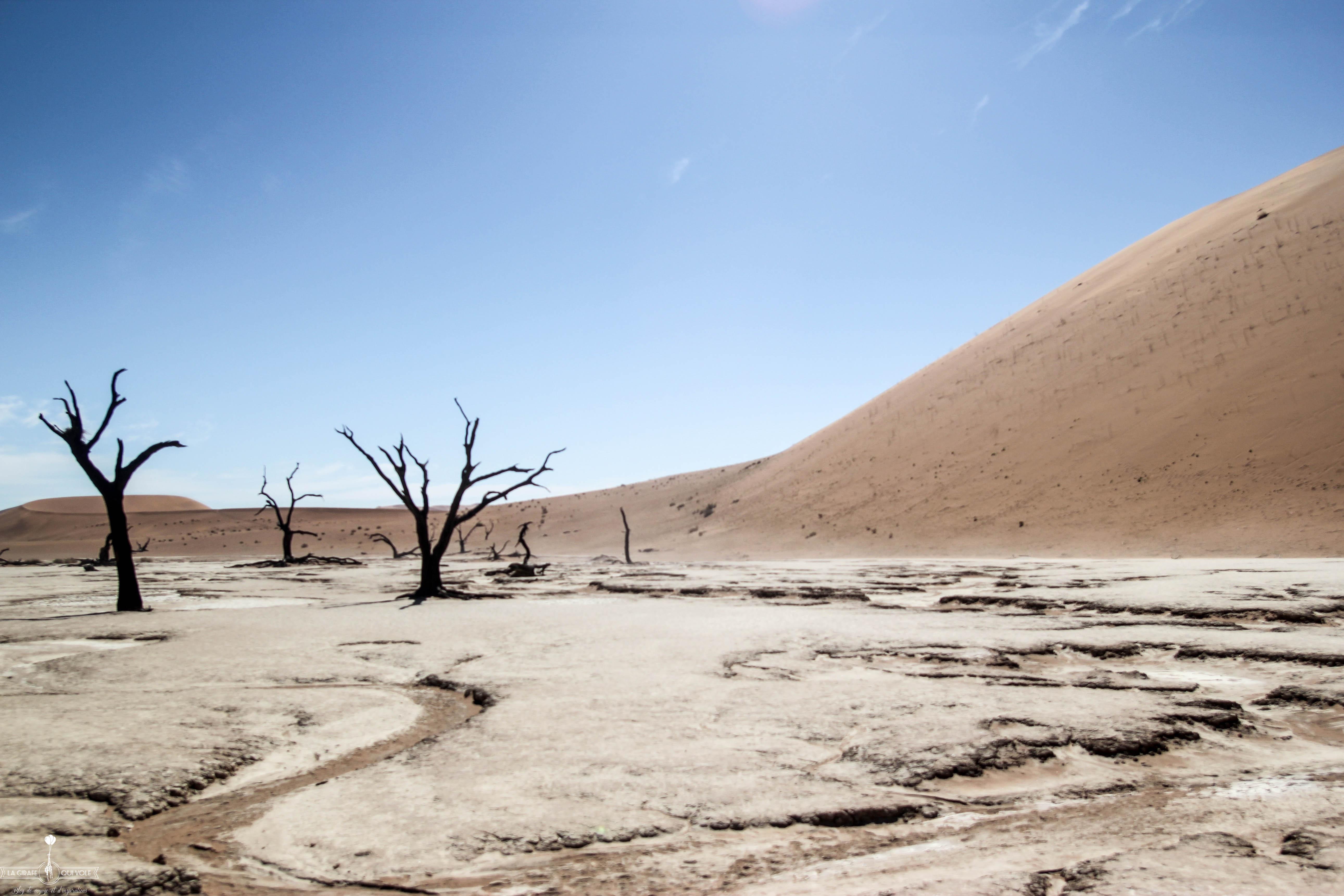 NamibieLe France Préparer Guide PratiqueSkyscanner Voyage En Un 6gY7vbyf